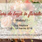Curs de Bază în Floristică