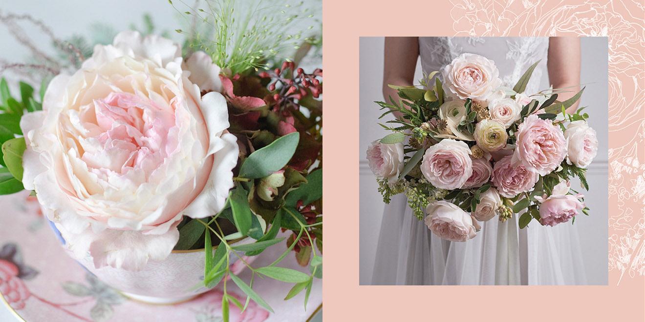 Trandafiri David Austin - articol pe blogul aadf.ro