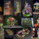 concurs al floriștilor din România, organizat de AADF